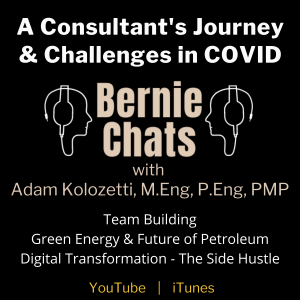 A Consultant's Journey & Challenges in COVID times